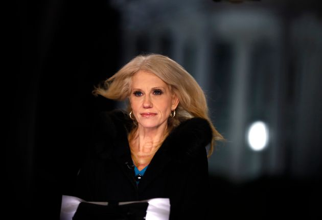Kellyanne Conway during a TV interview earlier this