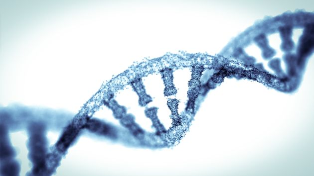The World Is A Step Closer To Allowing Us To Edit The Genes Of