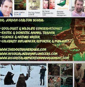 """<a rel=""""nofollow"""" href=""""http://www.facebook.com/jordan.schaul"""" target=""""_blank"""">Dr. Jordan Carlton Schaul</a>"""