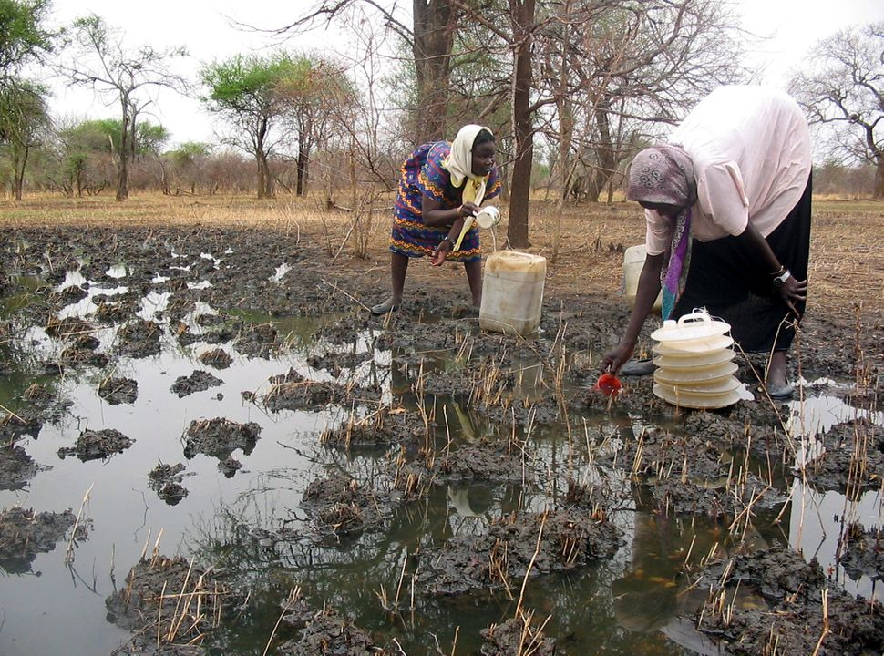 Internally displaced Sudanese women collect rainwater to be used for drinking and cooking in southern Sudan. Internally displ