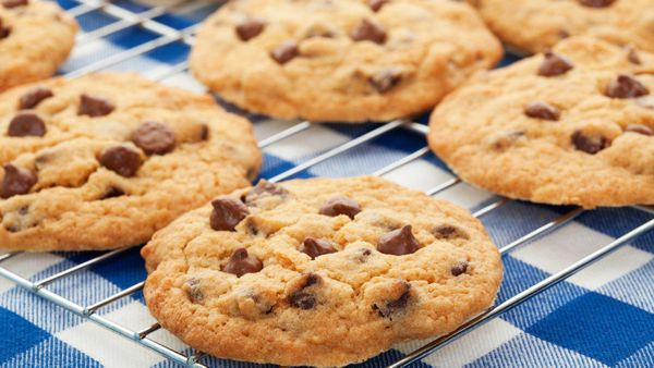 """One <a href=""""http://www.snackworks.com/products/product-detail.aspx?product=4400003219"""" target=""""_blank"""">chocolate chip cookie"""