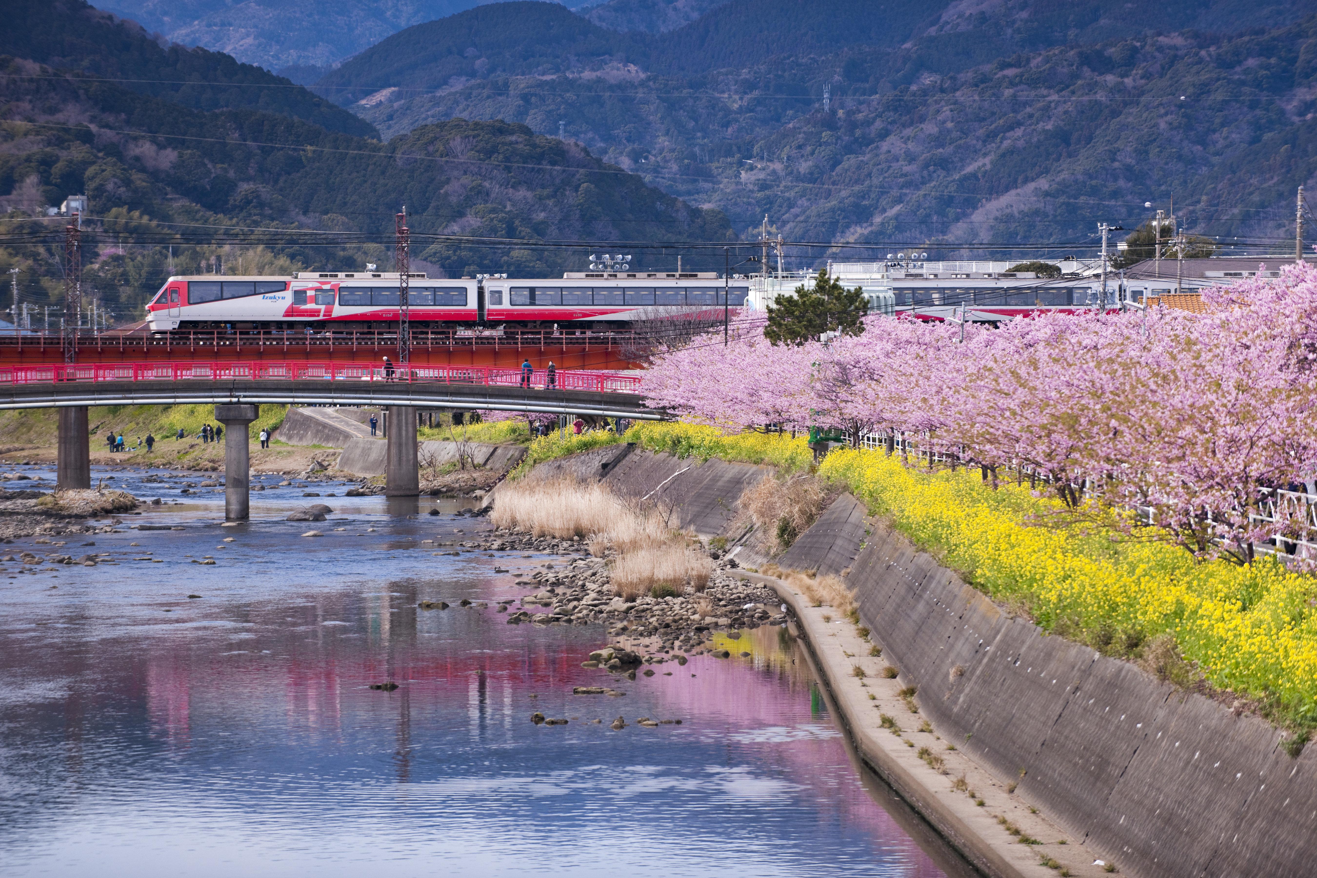 An undated photo showing theNanohane railway in Kawazu.