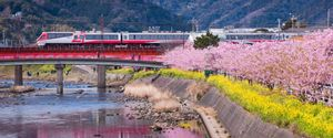 ARCHITECTURE BRIDGE BUILT STRUCTURE CHERRY BLOSSOM