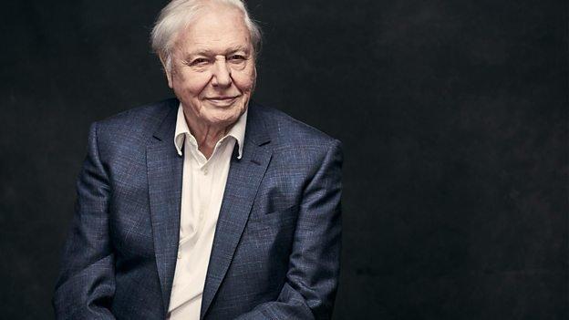 Sir David Attenborough will narrate 'Blue Planet