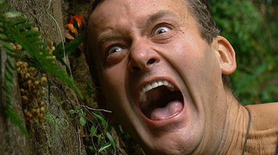 News From The Australian 'I'm A Celebrity' Camp Might Make Us All Scream Like Paul