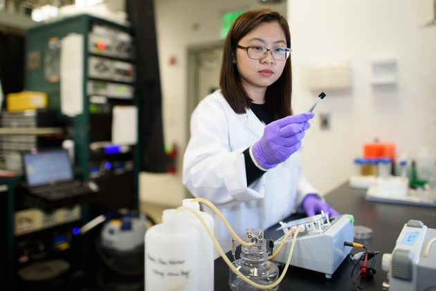 Nuclear Fuel:Researcher Chong Liu examines a carbon-amidoxime electrode as part of research to improve extraction of uranium from seawater. Image Credits: L.A. Cicero
