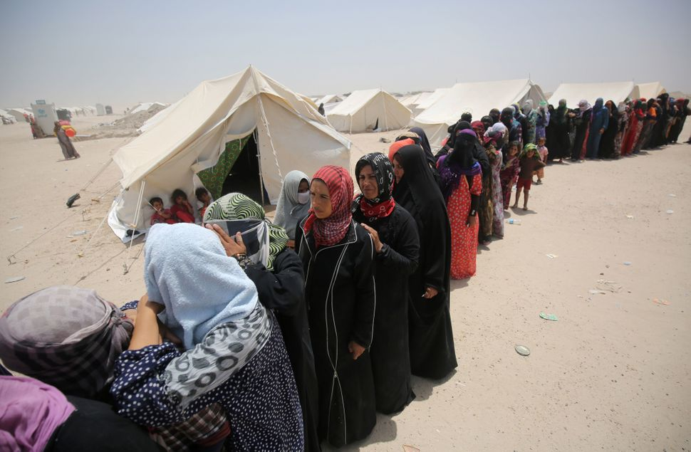 Iraqis women displaced from the city of Fallujah queue up to collect aid distributed by the Norwegian Refugee Council at a ne