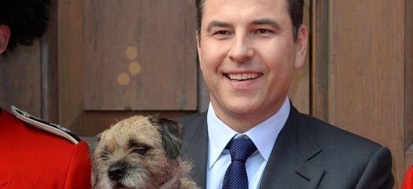 'BGT' Auditions Livened Up As David Walliams Suffers Unfortunate Incident Thanks To A Canine Audtionee