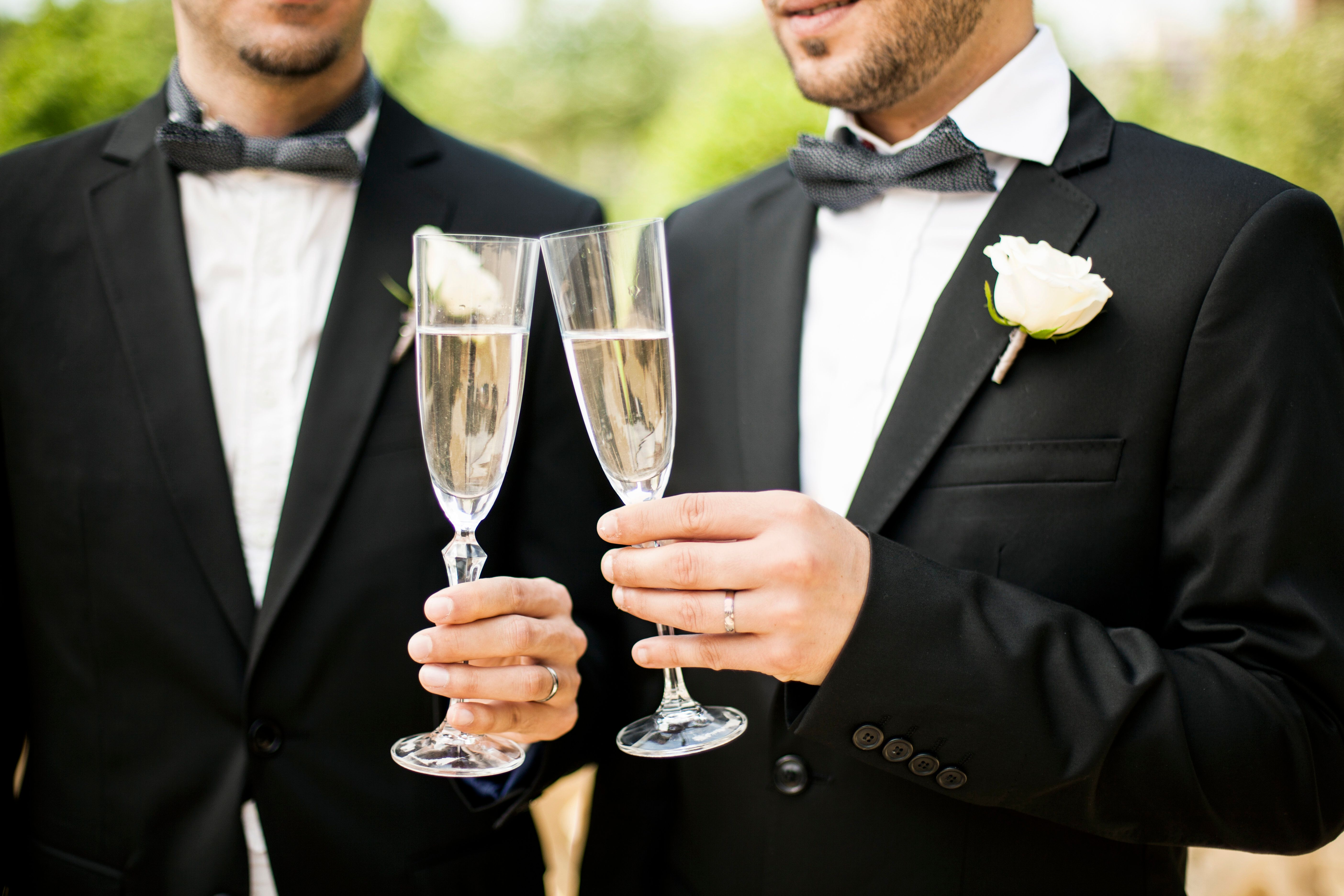Portrait of Gay Couple making a toast