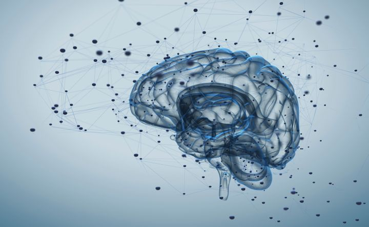 Brain Imaging Reveals Adhd As >> People With Adhd Have Different Brains Huffpost Life