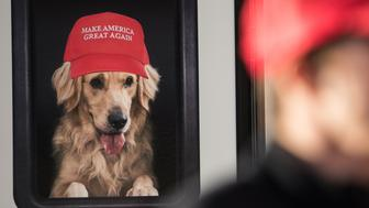 FLORENCE, SC - FEBRUARY 5:  A man stands near a Donald Trump campaign vehicle with an image of a dog in a window before a campaign rally February 5, 2016 in Florence, South Carolina. Trump's airplane was unable to return to New Hampshire from New York due to a snowstorm so he is holding an event in South Carolina. He plans to return to New Hampshire on Monday. The South Carolina Republican primary will be held on February 20. (Photo by Sean Rayford/Getty Images)