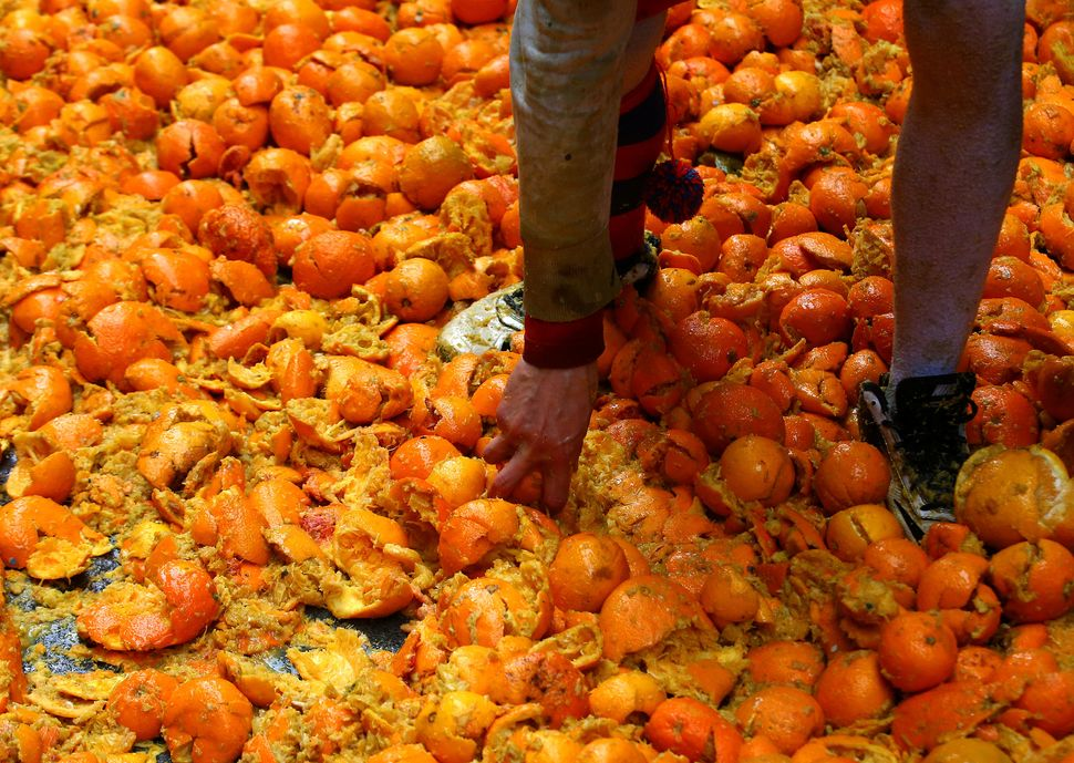 Oranges coverthe ground during the battle.