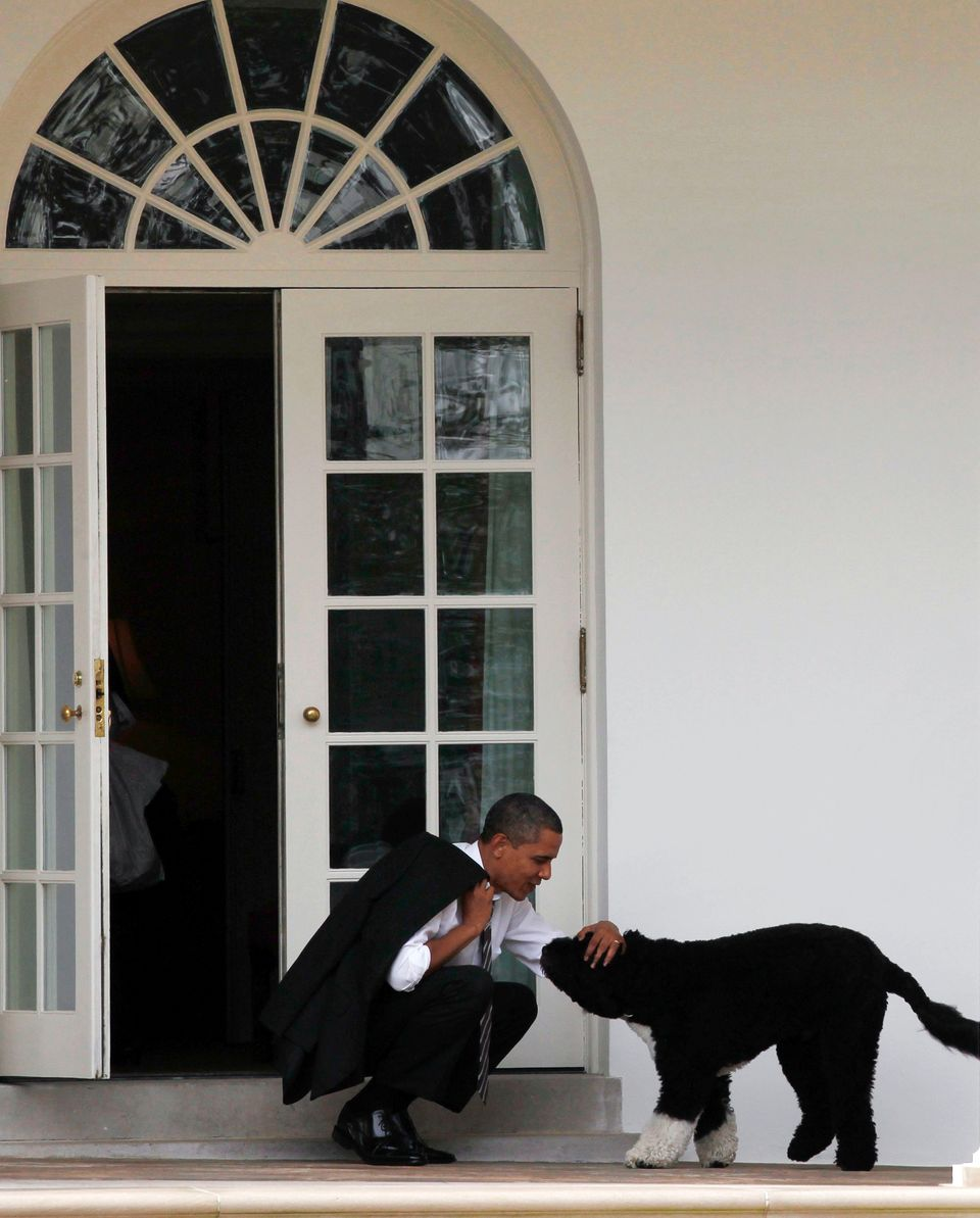 U.S. President Barack Obama bends down to pet his dog, Bo, outside the Oval Office of the White House in Washington March 15,