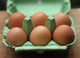 What Do Egg Labels Mean? Free Range Eggs Temporarily Lose Their Status Across The UK