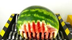 This Fruit And Veg Shredder Makes For Strangely Compulsive