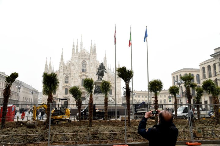 Newly planted palm trees are seen in Piazza Duomo on February 20 , 2017 in Milan, Italy. The American group Starbucks has decided to give a green area with palm trees in Piazza Duomo. The decision sparked much controversy and during the night of February 19, some protesters tried to burn three palm trees.