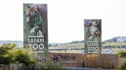 Harrowing Report Names Cumbrian Zoo Where 500 Animals Died In 4
