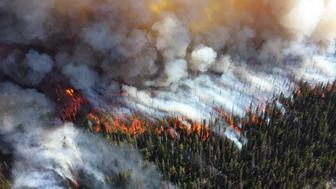 A wildfire at Yellowstone National Park