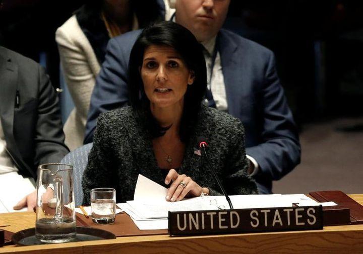 <em>Ambassador Haley in Security Council on chemical arms</em>