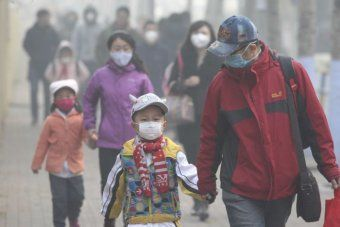 World Health Organization says 90% of humans breathe dangerously contaminated air.