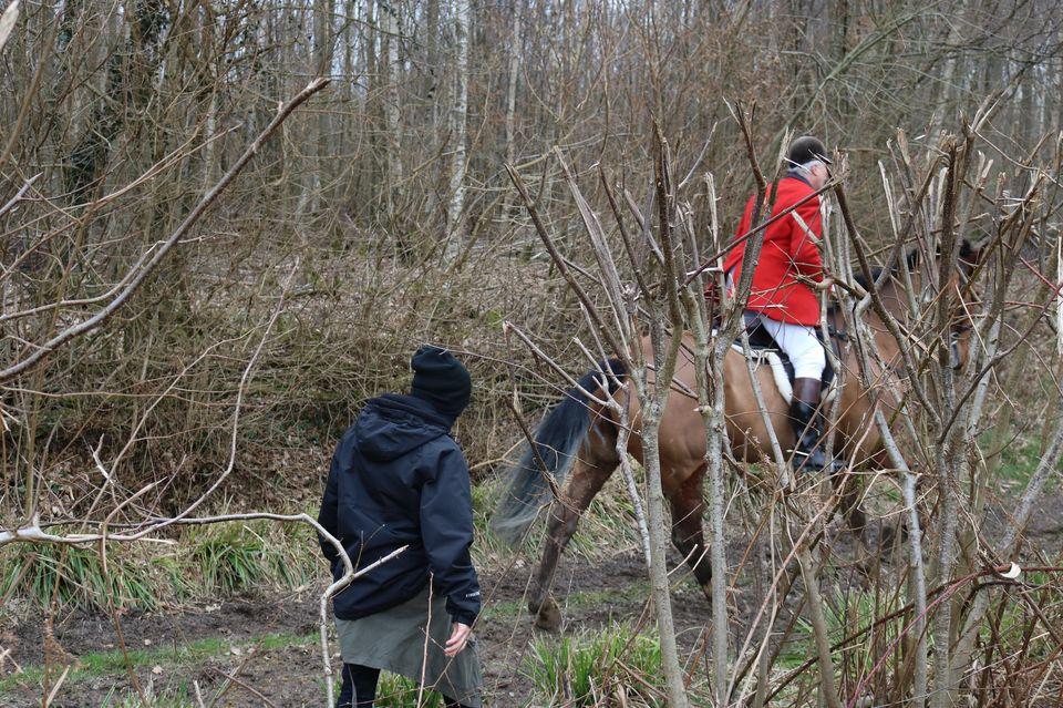 Some hunt sabs can get dangerously close to riders and their