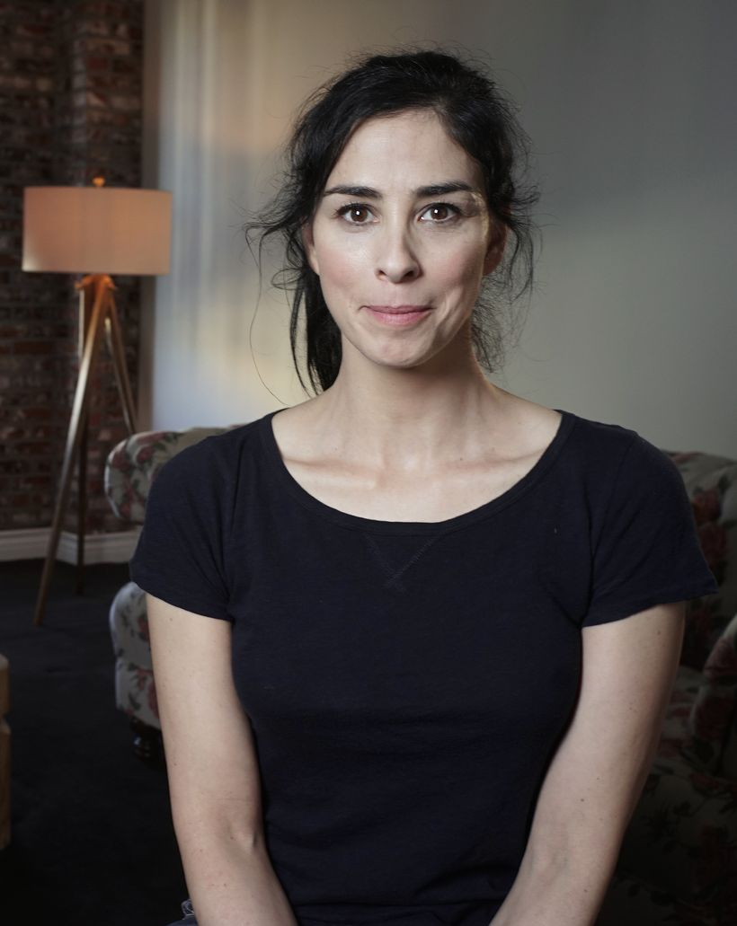 The alleged Sarah Silverman