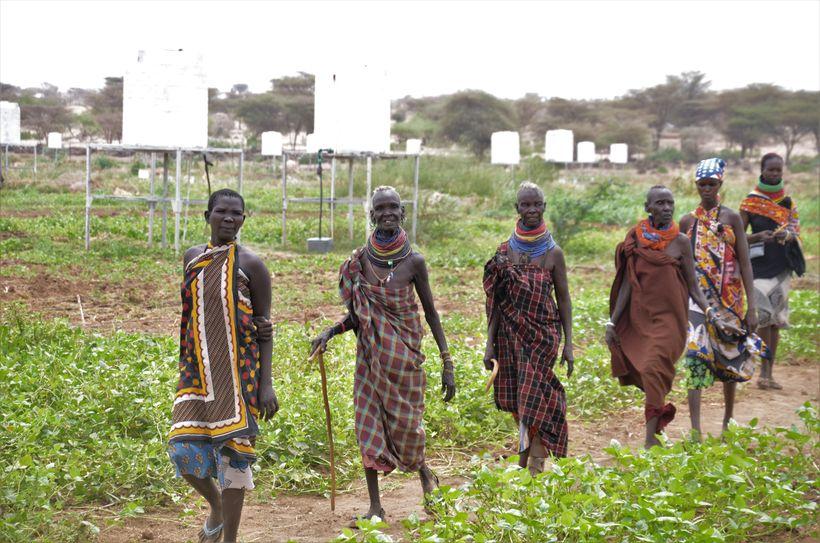 <em>Small holder farmers patrolling their plots in Napuu I Drip Irrigation scheme in Turkana. </em>