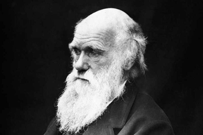 Charles Darwin, an old man with a white beard who called into question another Old Man with a White Beard.