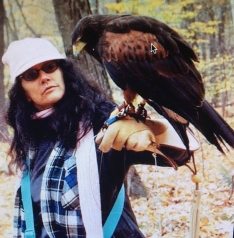 Mia & <em>Mycroft</em> (Harris Hawk) - British School of Falconry at the Equinox, Rob Waite, Director - Manchester Vermont  <