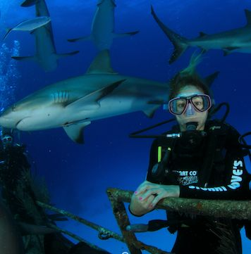 <p>Hanging with the sharks. </p>