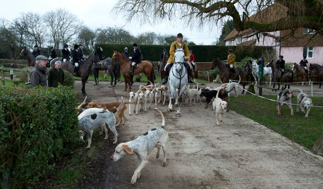 Gerald Sumner huntsman and master of the hounds of Kimblewick Hunt, leads off the hunt in Ibstone, England,...
