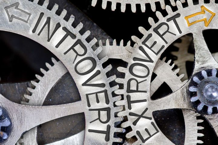<p><strong>Introvert:</strong> Tips on how to love your <strong>extrovert</strong></p>