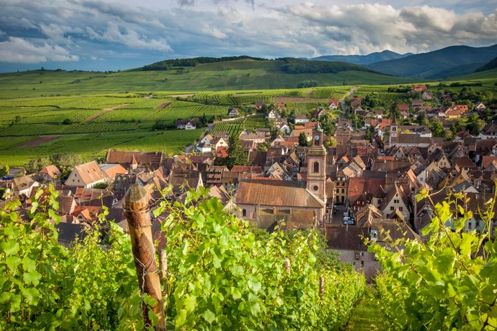"""Riquewihr, a<a href=""""http://www.ribeauville-riquewihr.com/en/discover/riquewihr.htm"""" target=""""_blank"""">vineyard town</a>, is known for itswell-preserved medieval character. All of Disney's Rhine River cruises offer the option to disembark there."""