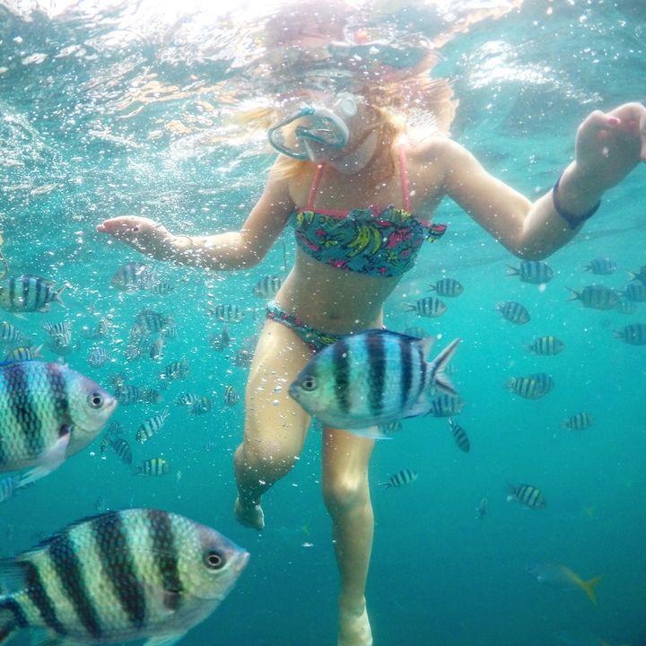 <p>Snorkeling in Coron, Philippines</p>