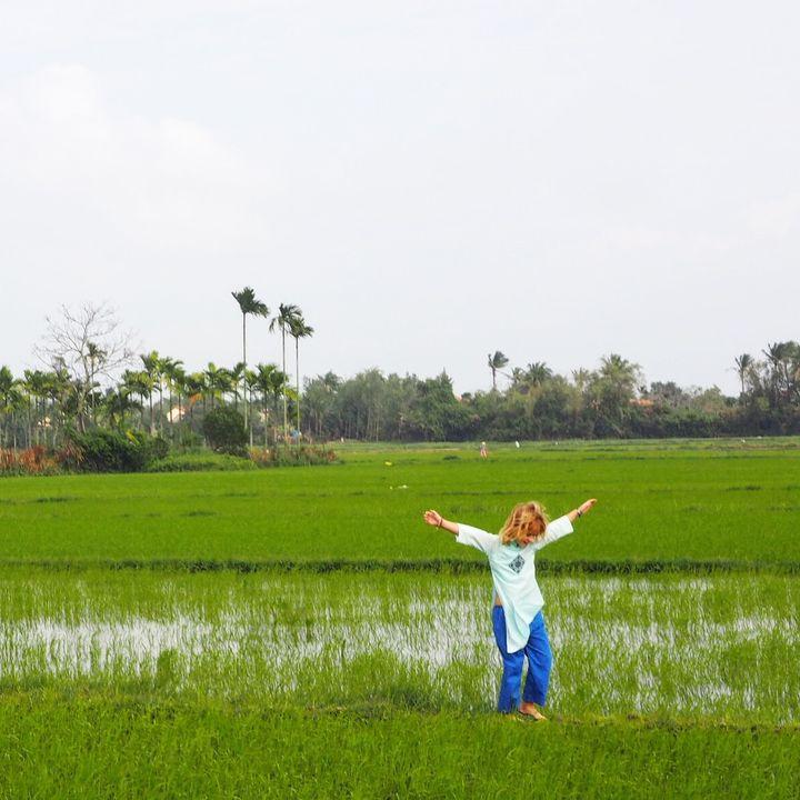 <p>Rice paddy walks in Hoi An, Vietnam</p>