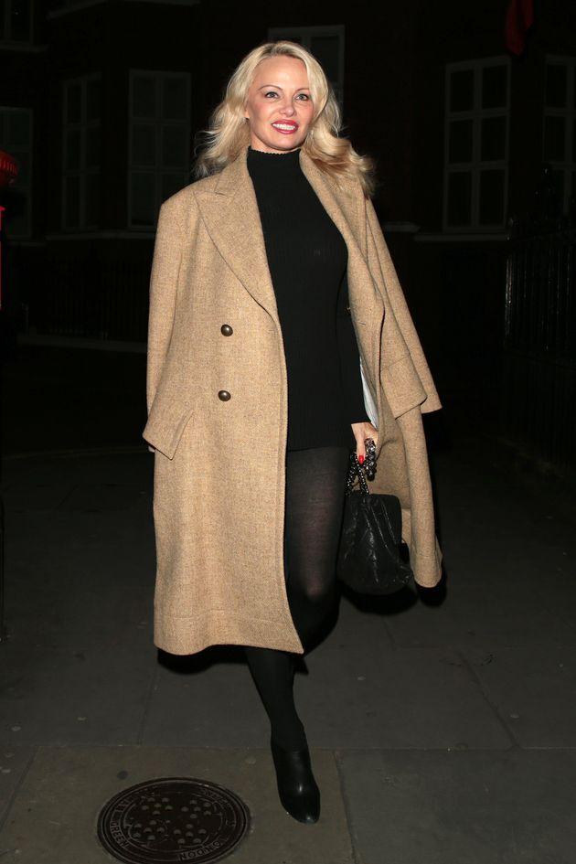 Pamela Anderson's Look Is Missing
