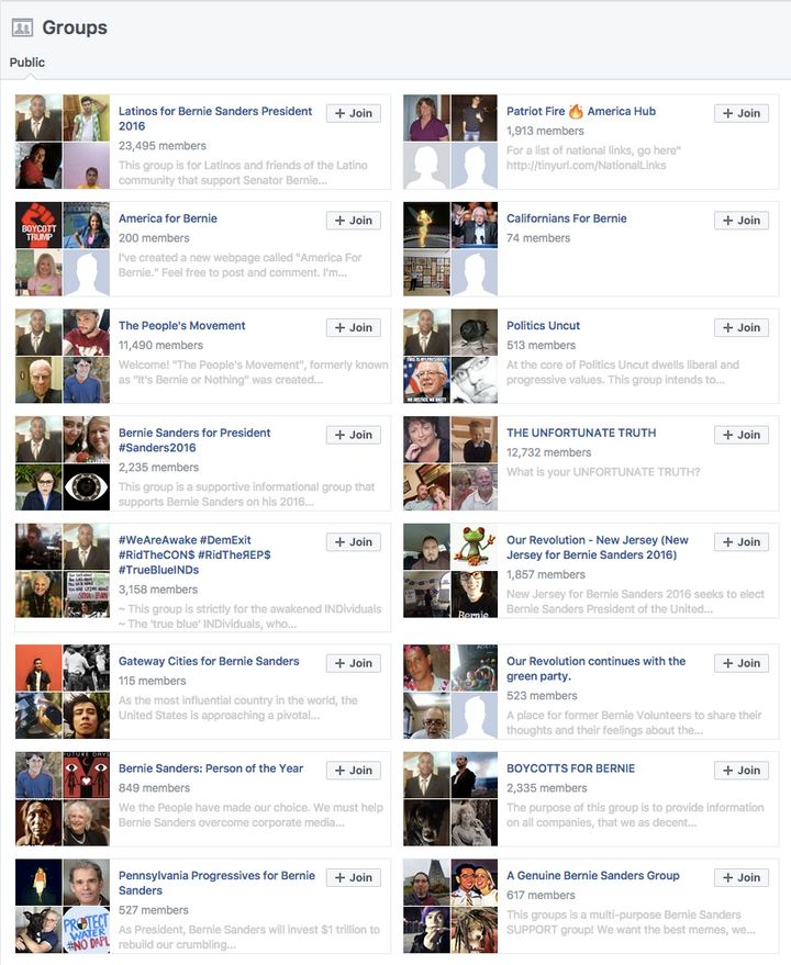 Mitov's long list of pro-Sanders Facebook pages shows no other outside interests.