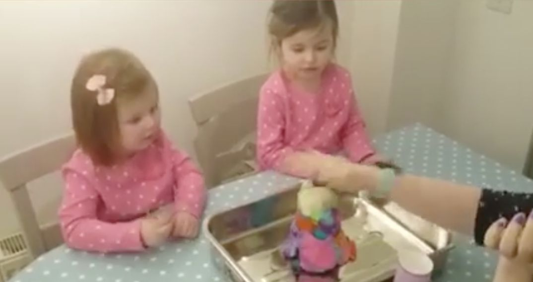 Big Sister Was Not Happy With The Result Of This Gender Reveal