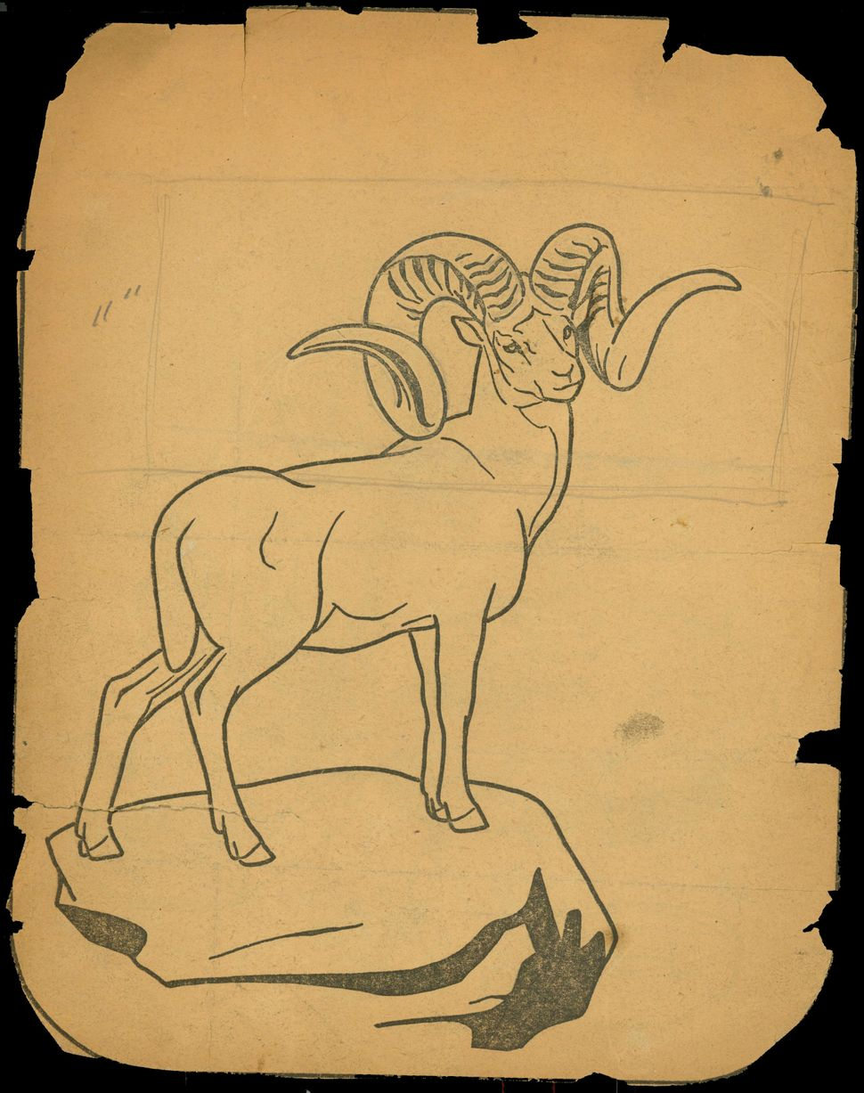 "Untitled coloring book clipping (""Ram with curled antlers"")."