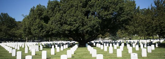 "About 400,000 souls are buried in <a rel=""nofollow"" href=""http://www.arlingtoncemetery.mil/Photo-of-the-Week/Post/3412/Arling"