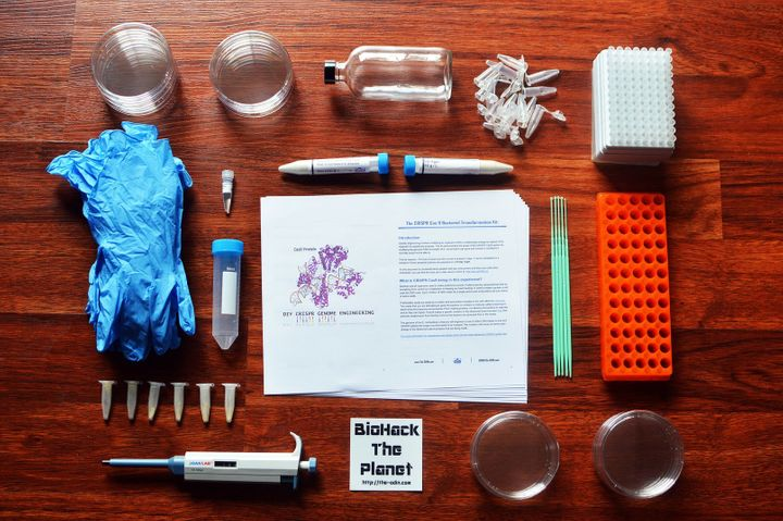 An at-home, DIY Bacterial Gene Engineering CRISPR Kit by The ODIN.