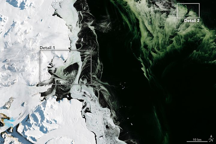 On March 5, 2017, NASA's Operational Land Imager captured this view of water, sea ice and phytoplankton above Antarctic