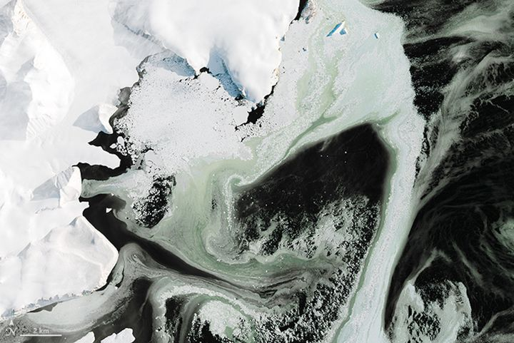 This is the first zoomed-in area showing the green hue of the Antarctic ice.