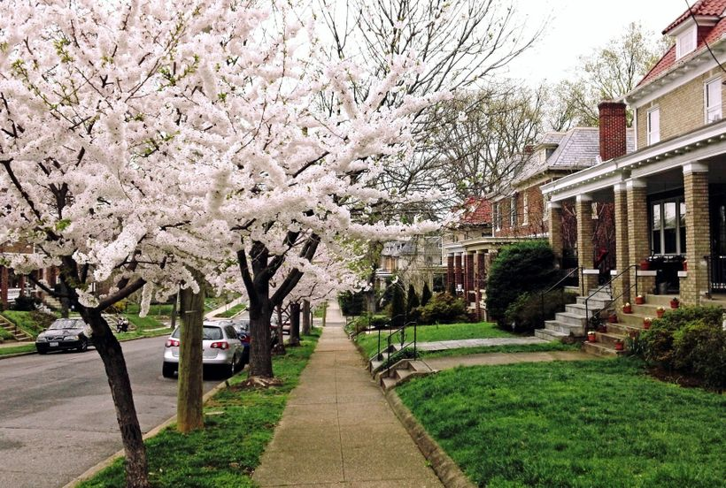 A close-in DC neighborhood with low driving rates