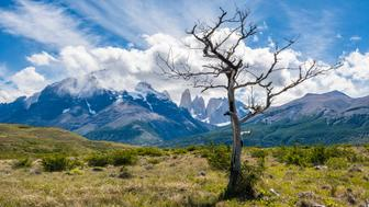 Amazing Torres del Paine National Park, Patagonia, Chile