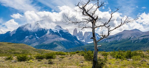 Private Land Gift Drives Vast Expansion Of Chile's National Parks