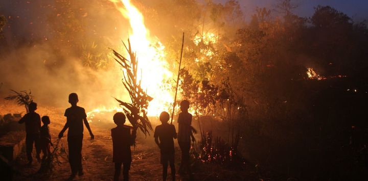 A bunch of Khasi children fire-fighters watch on, as the flames erupt in a slash and burn episode.