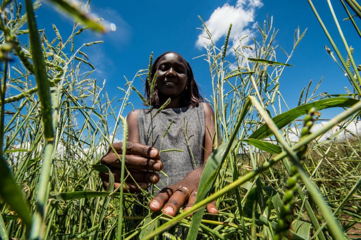 "<a rel=""nofollow"" href=""https://www.flickr.com/photos/ciat/27191635216"" target=""_blank"">Thousands of women farmers feed the w"