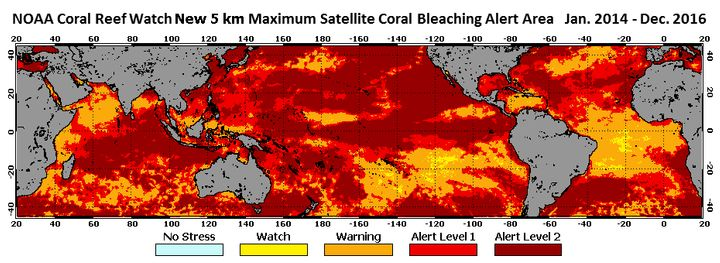 All tropical oceans were unusually hot between January 2014 and December 2016, with most coral reef ecosystems exposed to con
