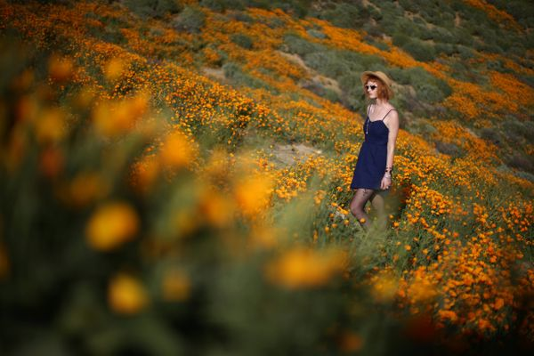 A woman walks through the desert that's usually dry, but is now a beautiful spring wildflower bloom in Lake Elsinor
